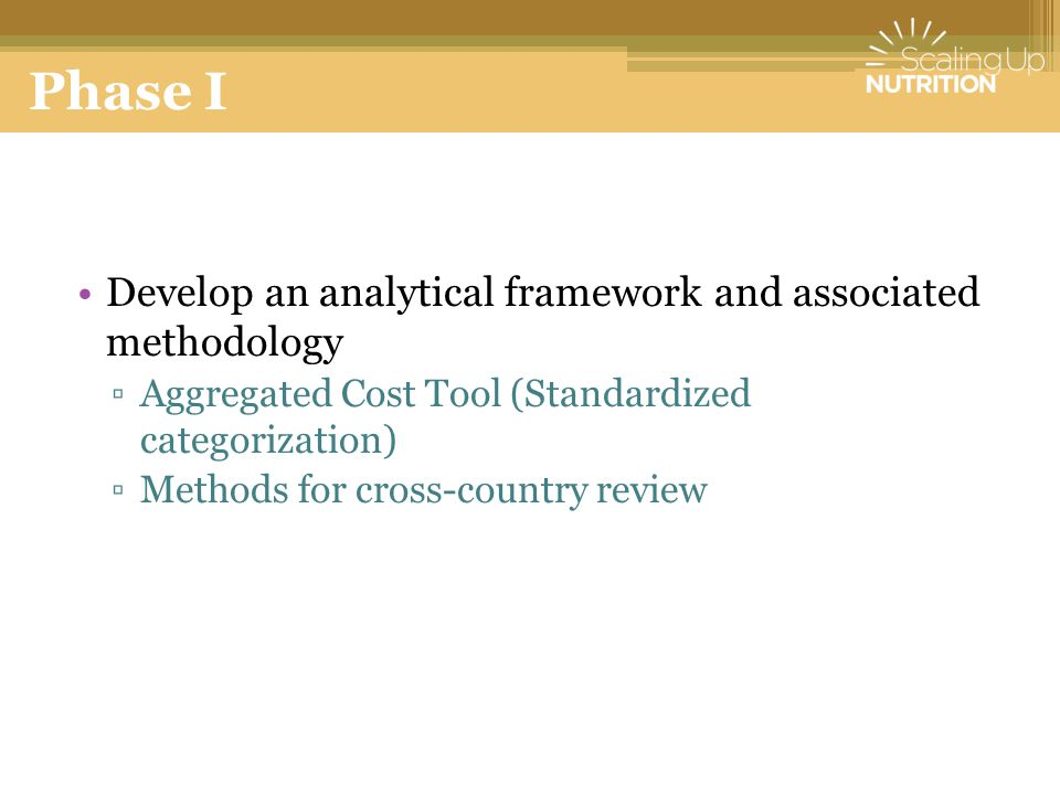 Phase I Develop an analytical framework and associated methodology ▫Aggregated Cost Tool (Standardized categorization) ▫Methods for cross-country review