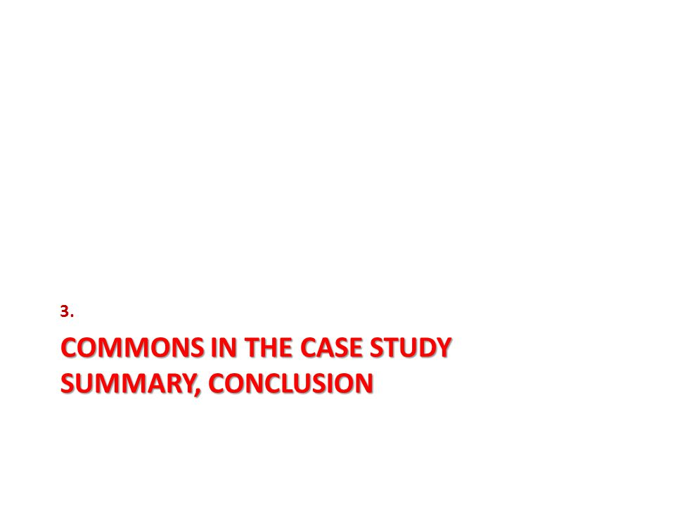 COMMONS IN THE CASE STUDY SUMMARY, CONCLUSION 3.