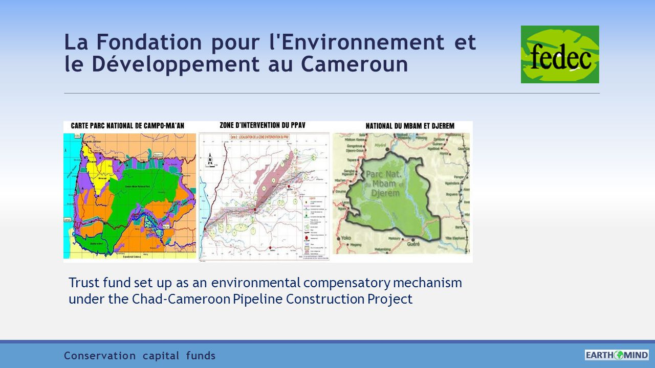 La Fondation pour l Environnement et le Développement au Cameroun Trust fund set up as an environmental compensatory mechanism under the Chad-Cameroon Pipeline Construction Project Conservation capital funds