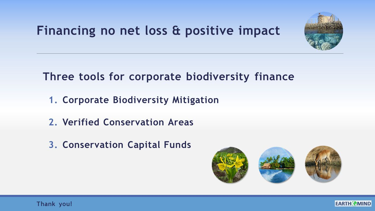 Financing no net loss & positive impact Three tools for corporate biodiversity finance 1.Corporate Biodiversity Mitigation 2.Verified Conservation Areas 3.Conservation Capital Funds Thank you!