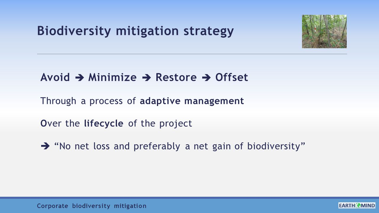 Biodiversity mitigation strategy Avoid  Minimize  Restore  Offset Through a process of adaptive management Over the lifecycle of the project  No net loss and preferably a net gain of biodiversity Corporate biodiversity mitigation