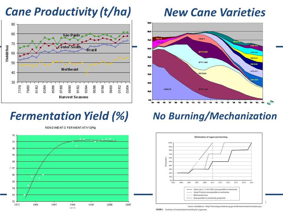 10 Cane Productivity (t/ha) New Cane Varieties Fermentation Yield (%) No Burning/Mechanization