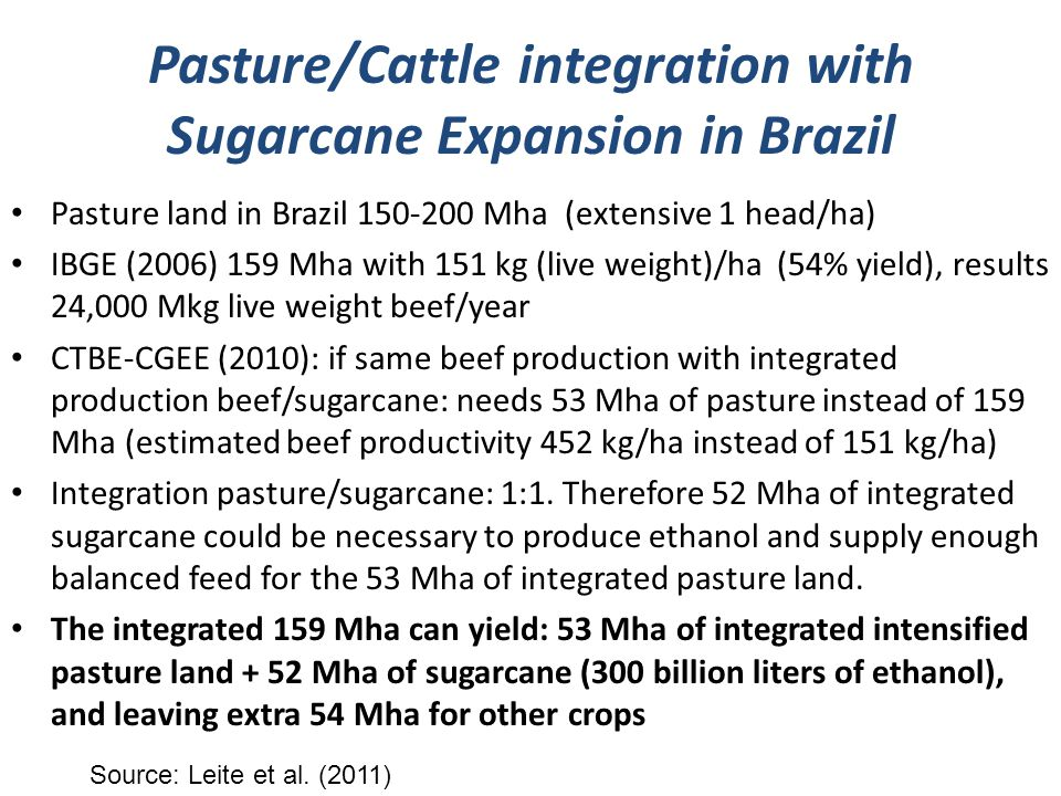 Pasture/Cattle integration with Sugarcane Expansion in Brazil Pasture land in Brazil 150-200 Mha (extensive 1 head/ha) IBGE (2006) 159 Mha with 151 kg (live weight)/ha (54% yield), results 24,000 Mkg live weight beef/year CTBE-CGEE (2010): if same beef production with integrated production beef/sugarcane: needs 53 Mha of pasture instead of 159 Mha (estimated beef productivity 452 kg/ha instead of 151 kg/ha) Integration pasture/sugarcane: 1:1.
