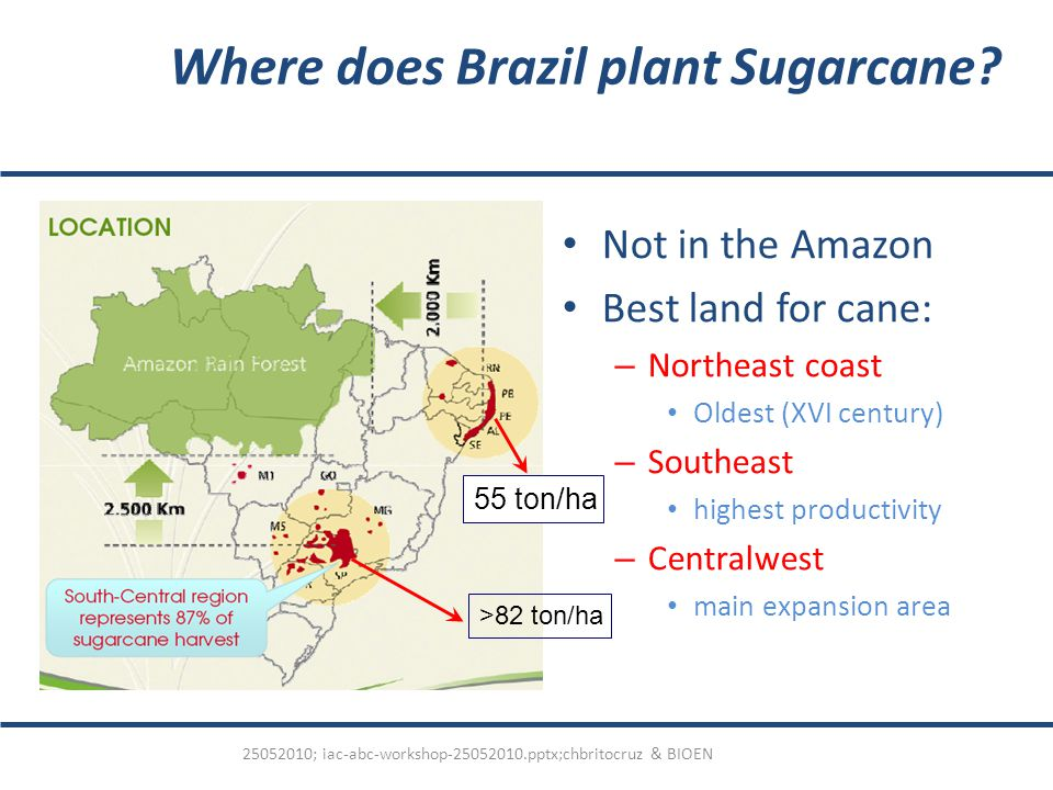 Where does Brazil plant Sugarcane.