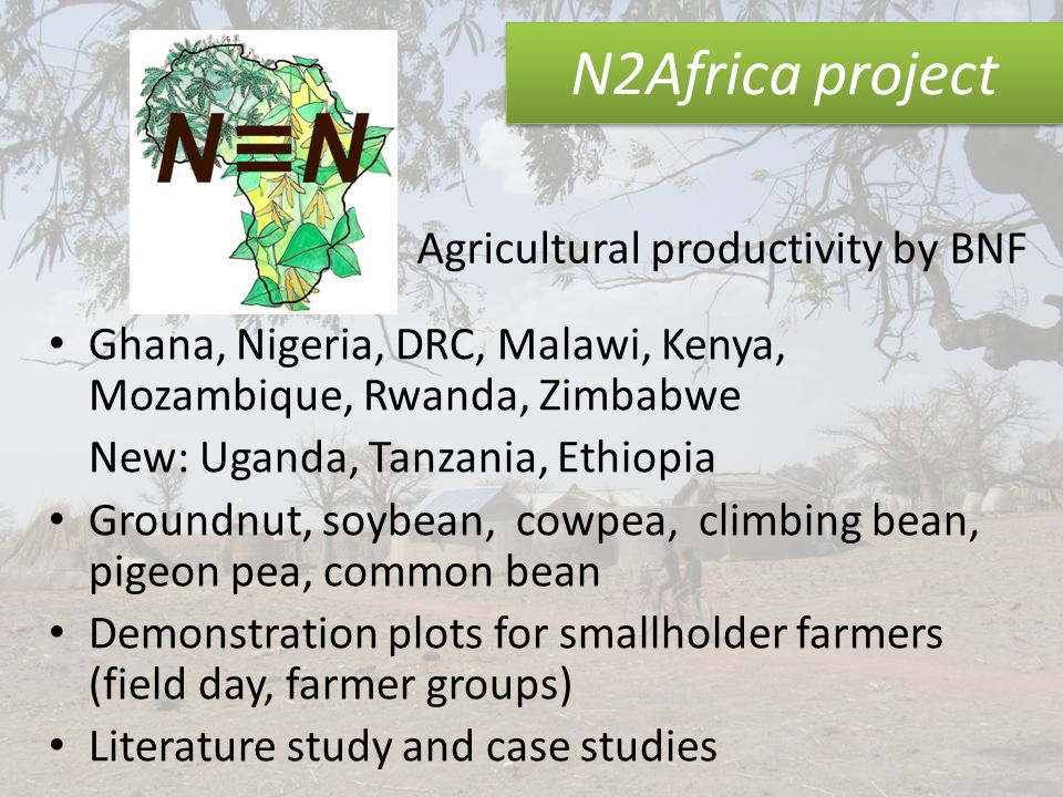 N2Africa project Ghana, Nigeria, DRC, Malawi, Kenya, Mozambique, Rwanda, Zimbabwe New: Uganda, Tanzania, Ethiopia Groundnut, soybean, cowpea, climbing bean, pigeon pea, common bean Demonstration plots for smallholder farmers (field day, farmer groups) Literature study and case studies Agricultural productivity by BNF