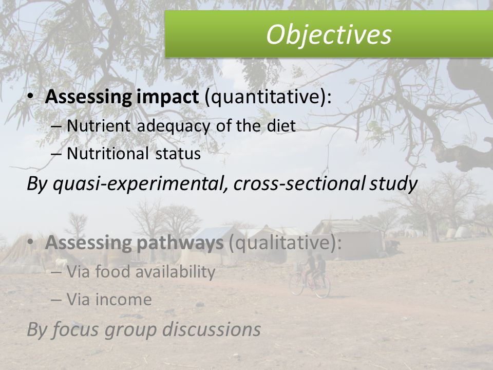 Objectives Assessing impact (quantitative): – Nutrient adequacy of the diet – Nutritional status By quasi-experimental, cross-sectional study Assessing pathways (qualitative): – Via food availability – Via income By focus group discussions