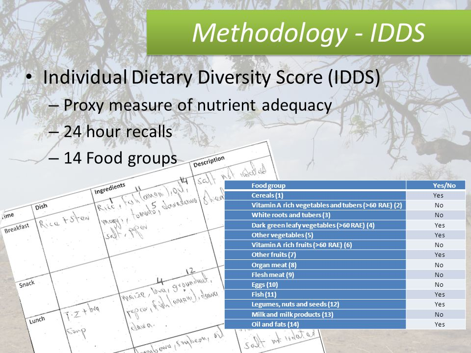 Methodology - IDDS Individual Dietary Diversity Score (IDDS) – Proxy measure of nutrient adequacy – 24 hour recalls – 14 Food groups Food groupYes/No Cereals (1)Yes Vitamin A rich vegetables and tubers (>60 RAE) (2) No White roots and tubers (3) No Dark green leafy vegetables (>60 RAE) (4) Yes Other vegetables (5) Yes Vitamin A rich fruits (>60 RAE) (6) No Other fruits (7) Yes Organ meat (8) No Flesh meat (9) No Eggs (10) No Fish (11) Yes Legumes, nuts and seeds (12) Yes Milk and milk products (13) No Oil and fats (14) Yes