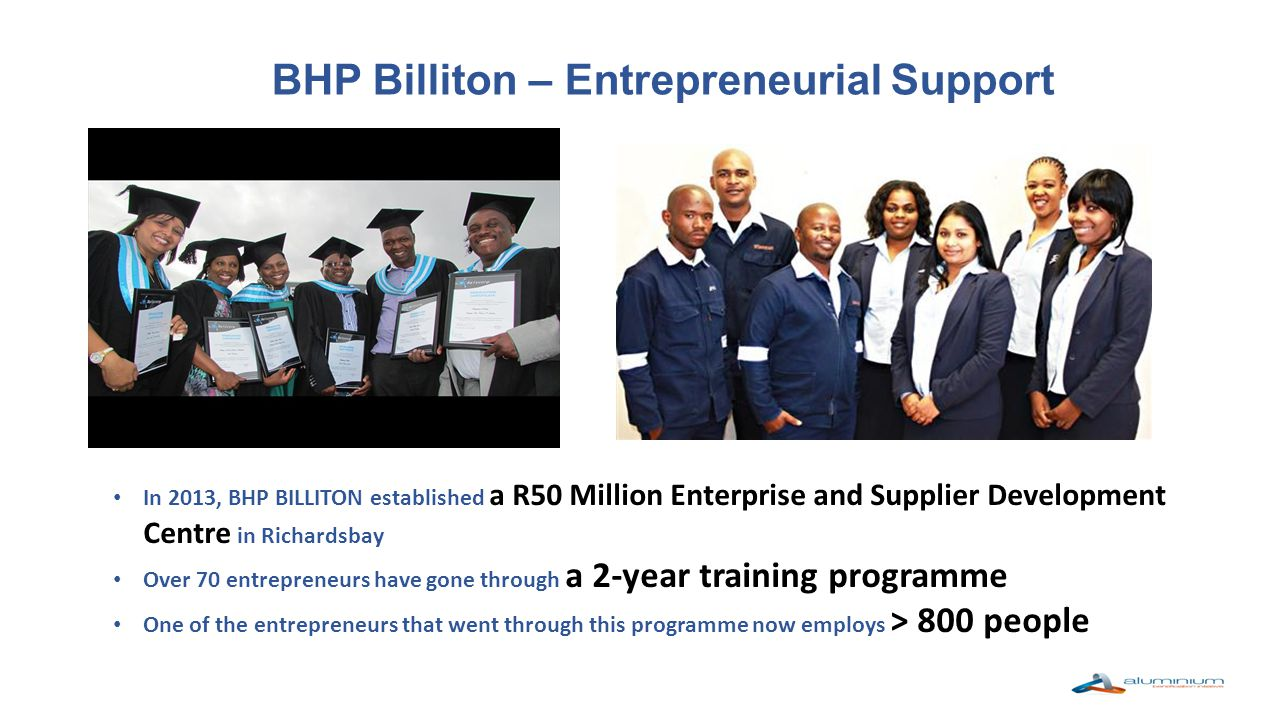 Summary Technical Support Raw Material Funding Facilitation Business Support and Guidance – within the Competition Act Framework Support Model