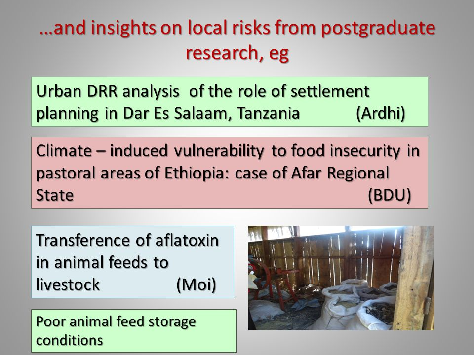 …and insights on local risks from postgraduate research, eg Urban DRR analysis of the role of settlement planning in Dar Es Salaam, Tanzania (Ardhi) Climate – induced vulnerability to food insecurity in pastoral areas of Ethiopia: case of Afar Regional State (BDU) Transference of aflatoxin in animal feeds to livestock (Moi) Poor animal feed storage conditions