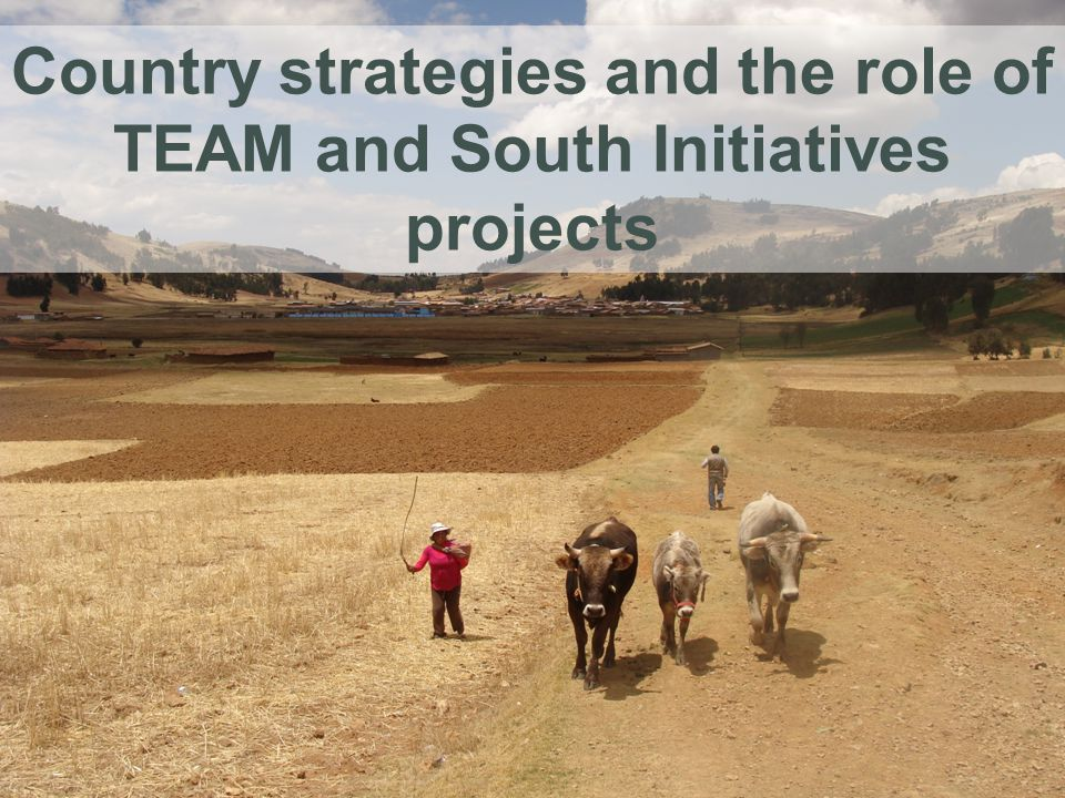 Country strategies and the role of TEAM and South Initiatives projects