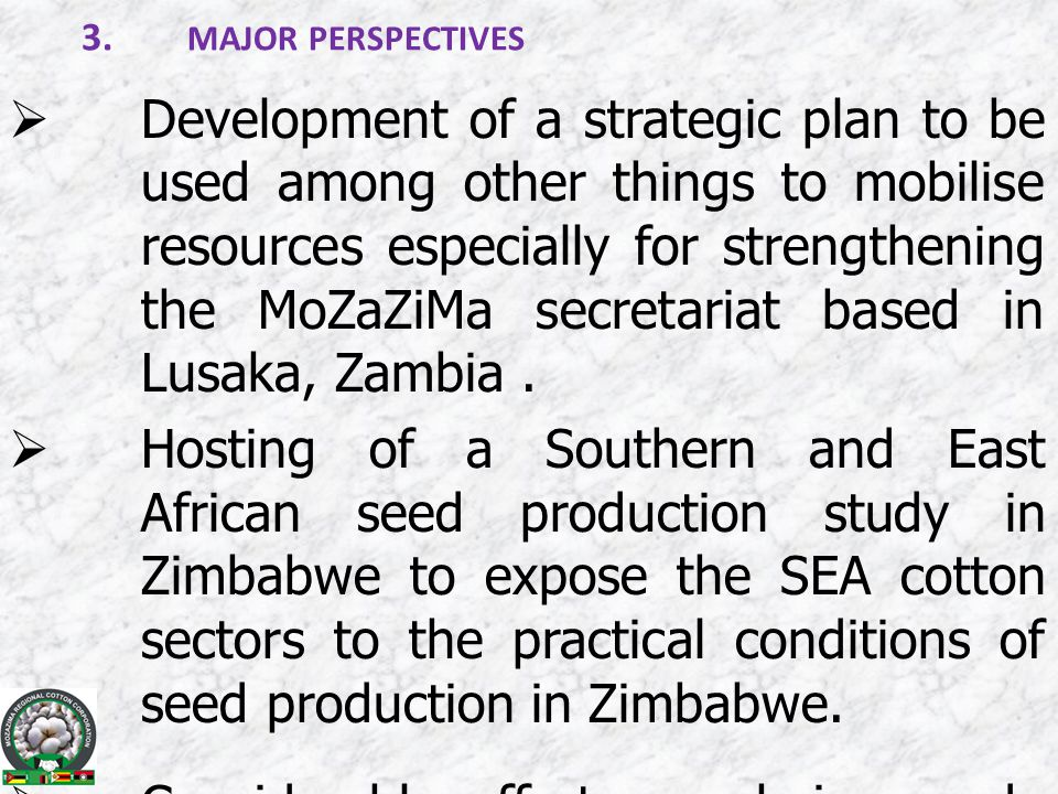 3. MAJOR PERSPECTIVES  Development of a strategic plan to be used among other things to mobilise resources especially for strengthening the MoZaZiMa