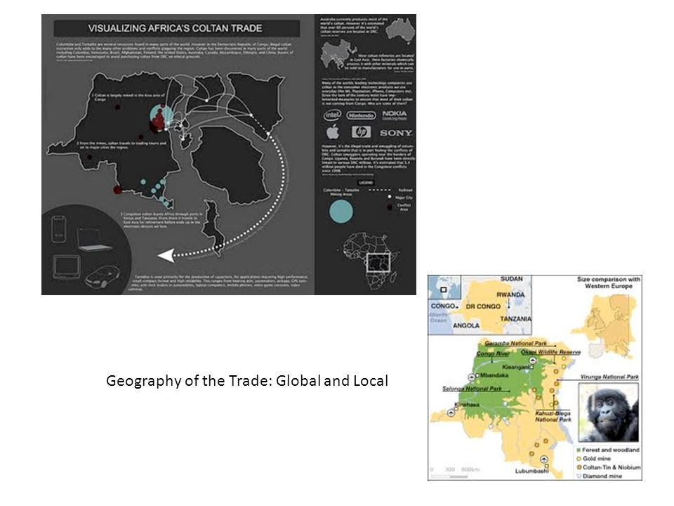 Geography of the Trade: Global and Local