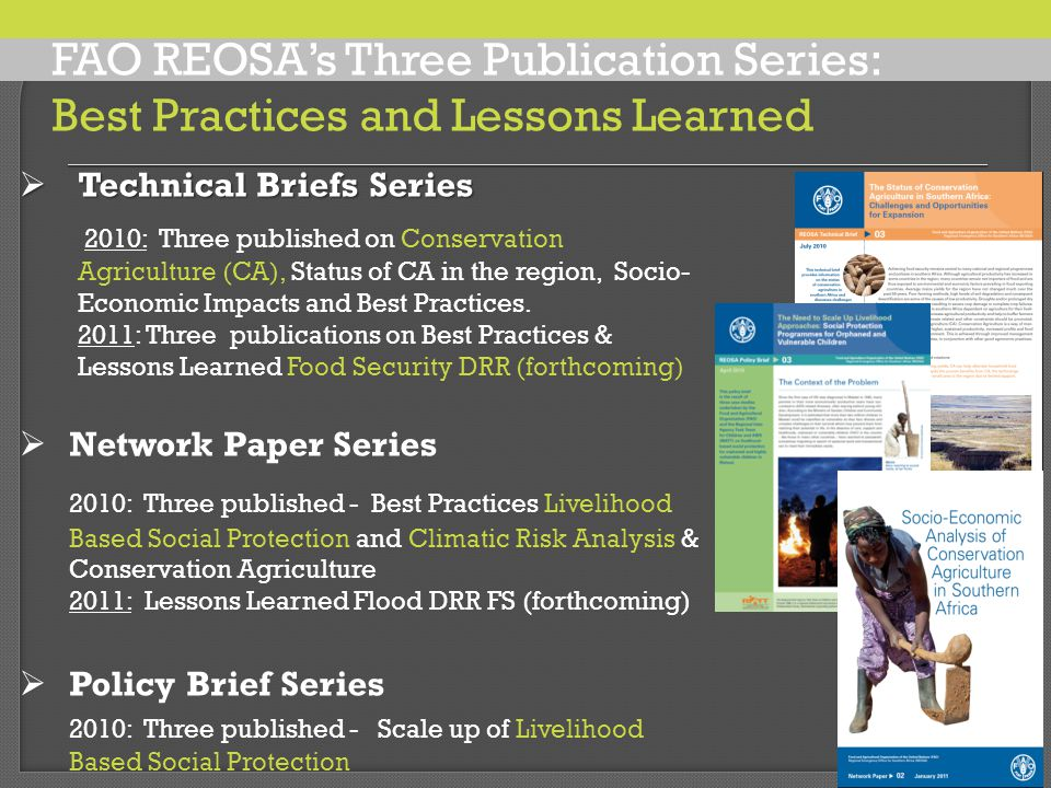  Technical Briefs Series 2010: Three published on Conservation Agriculture (CA), Status of CA in the region, Socio- Economic Impacts and Best Practices.