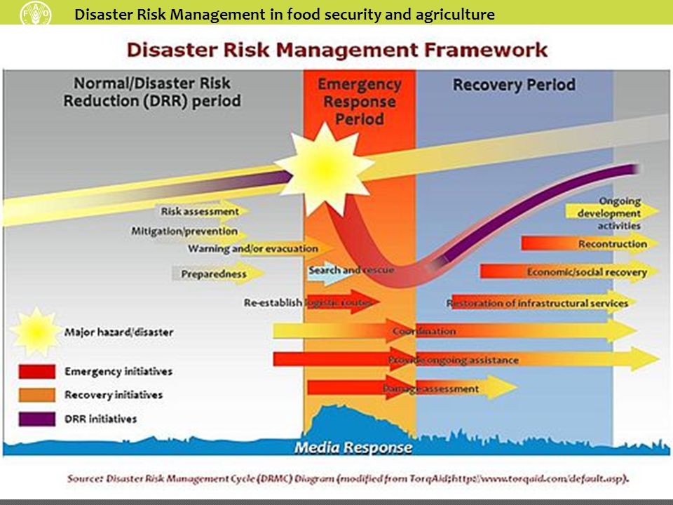 Disaster Risk Management in food security and agriculture