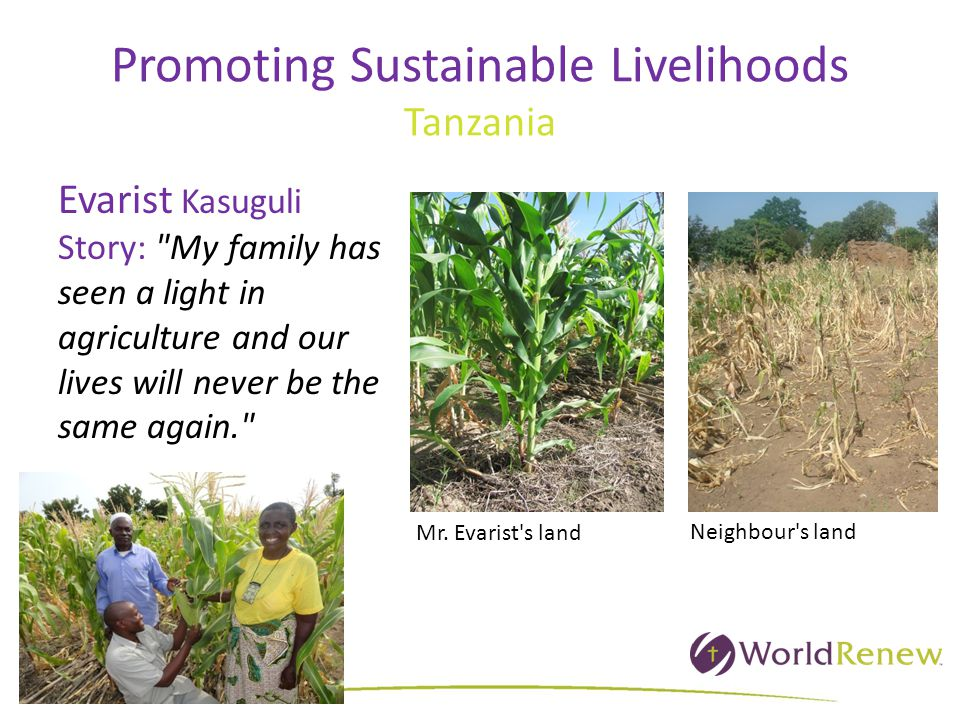 Promoting Sustainable Livelihoods Tanzania Evarist Kasuguli Story: My family has seen a light in agriculture and our lives will never be the same again. Neighbour s land Mr.