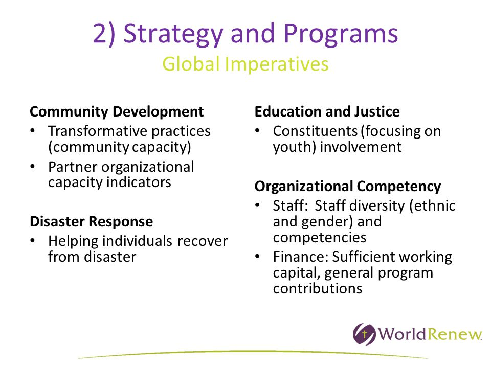2) Strategy and Programs Global Imperatives Community Development Transformative practices (community capacity) Partner organizational capacity indicators Disaster Response Helping individuals recover from disaster Education and Justice Constituents (focusing on youth) involvement Organizational Competency Staff: Staff diversity (ethnic and gender) and competencies Finance: Sufficient working capital, general program contributions