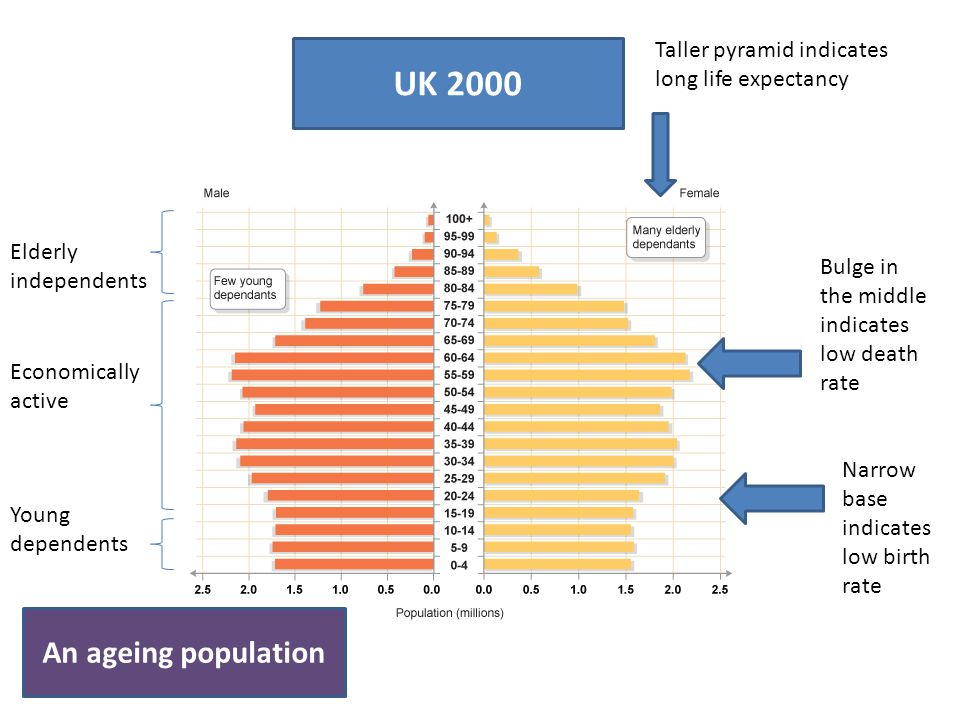 UK 2000 Narrow base indicates low birth rate Bulge in the middle indicates low death rate Taller pyramid indicates long life expectancy Elderly indepe
