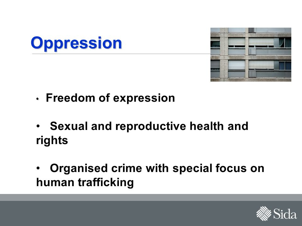 Oppression Freedom of expression Sexual and reproductive health and rights Organised crime with special focus on human trafficking