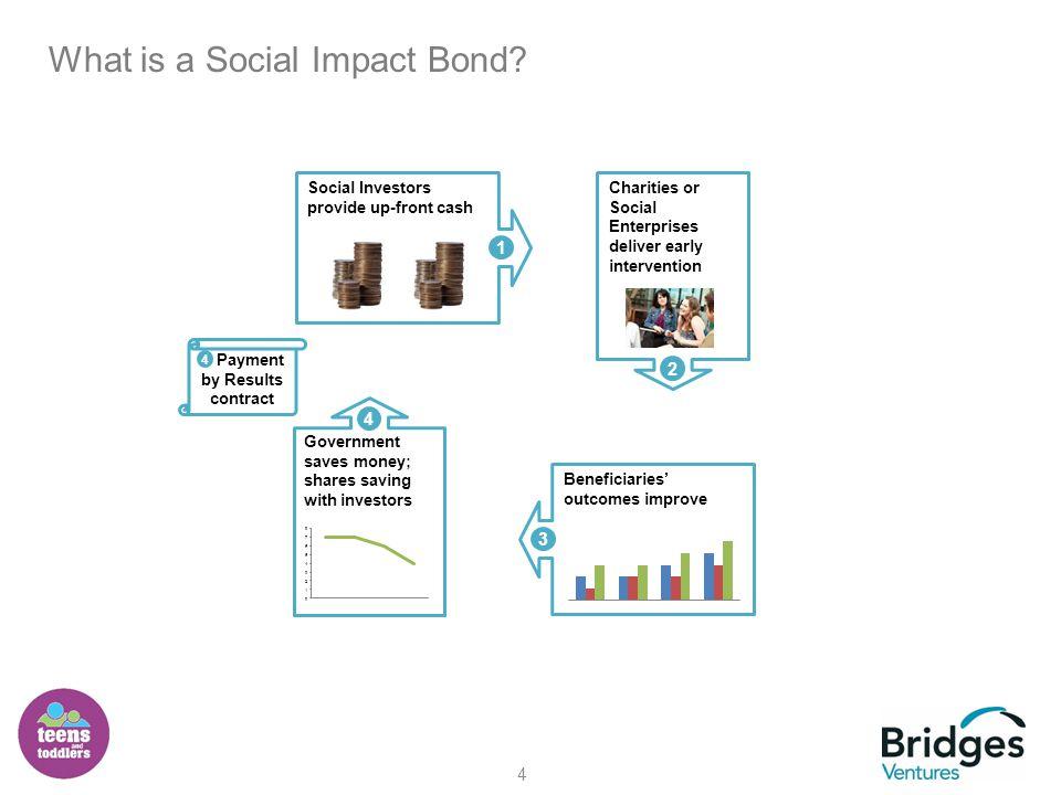 5 Who are Social Investors.