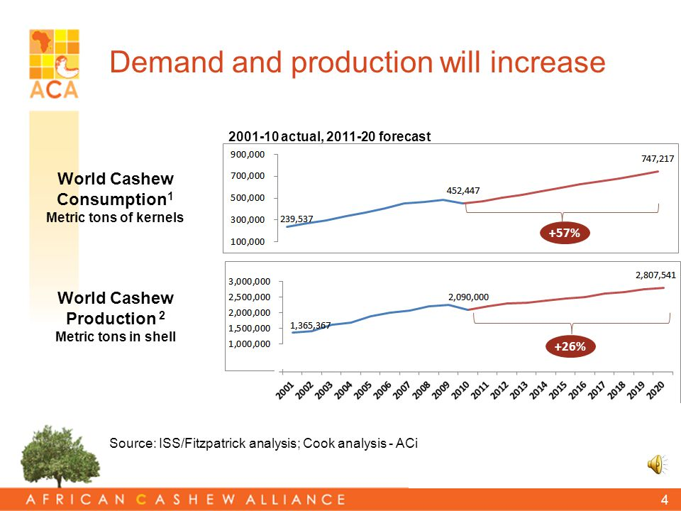 3 Cashew market growth Global exported kernels index 1961 = 100 1961 1971 1981 1991 2010 1 2001 Value Quantity 1 SOURCE: Mwombeki Baregu; Consultant; The World Bank Presentation at ACA Conference 2010