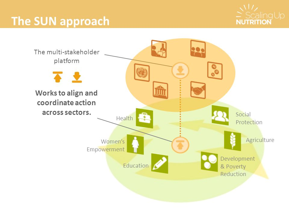 The SUN approach The multi-stakeholder platform Works to align and coordinate action across sectors. Women's Empowerment Health Development & Poverty