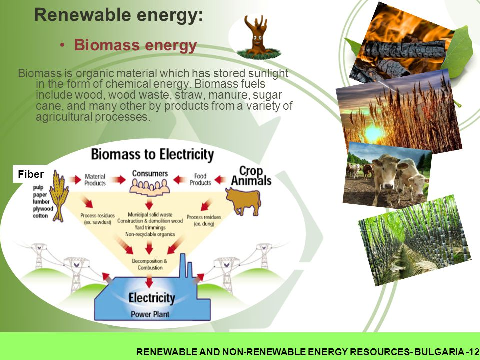 RENEWABLE AND NON-RENEWABLE ENERGY RESOURCES- BULGARIA -12 Renewable energy: Biomass is organic material which has stored sunlight in the form of chem