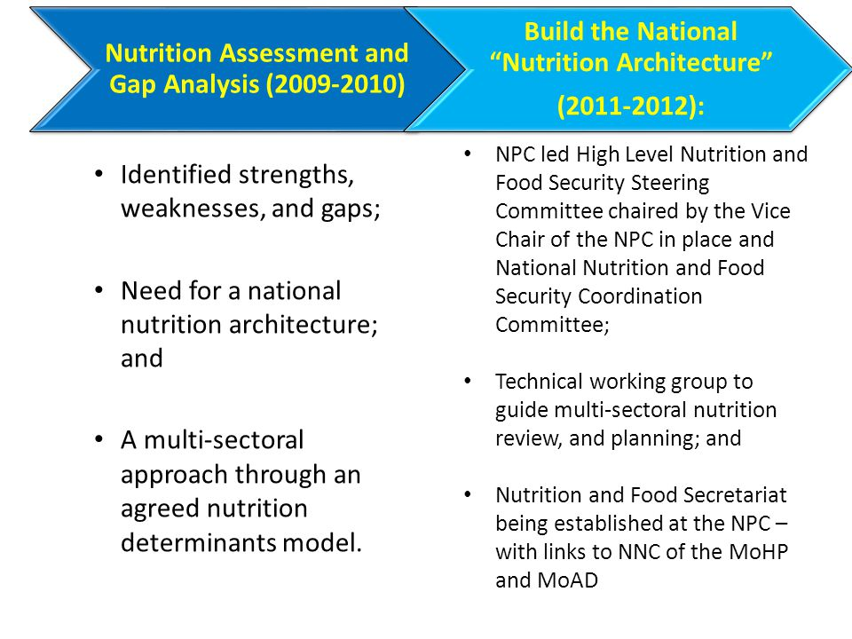 Identified strengths, weaknesses, and gaps; Need for a national nutrition architecture; and A multi-sectoral approach through an agreed nutrition determinants model.