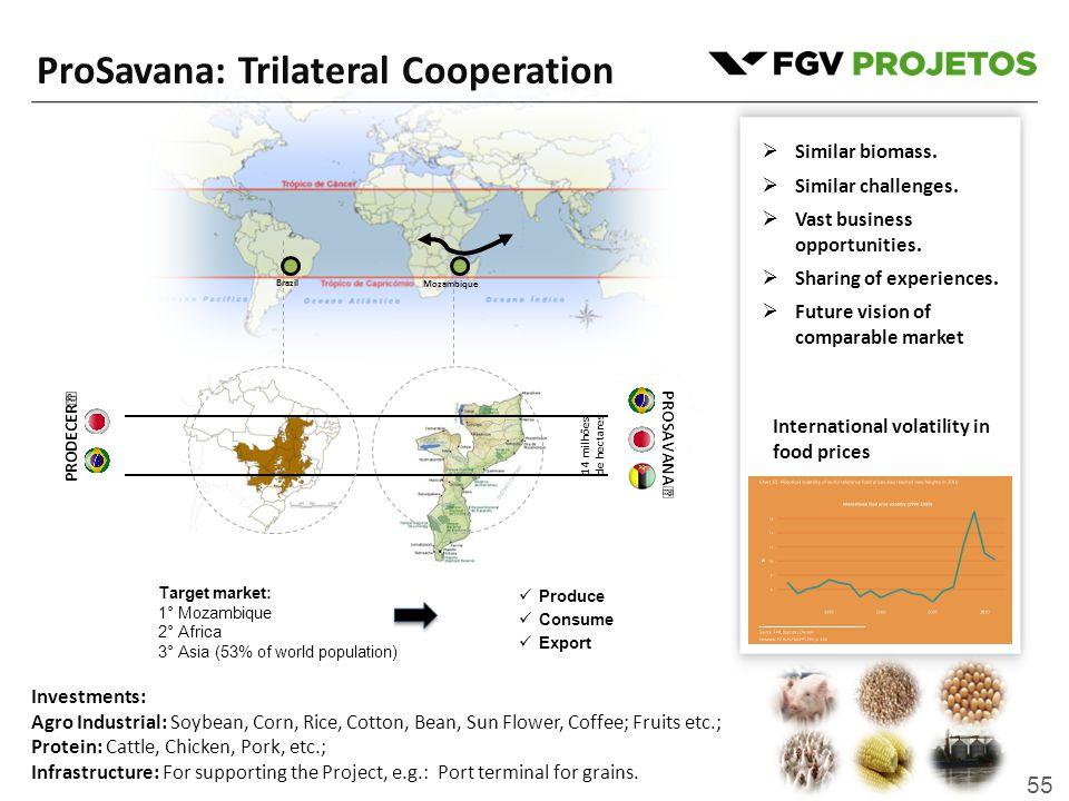 55 13° 17° Brazil Mozambique 14 milhões de hectares  Similar biomass.