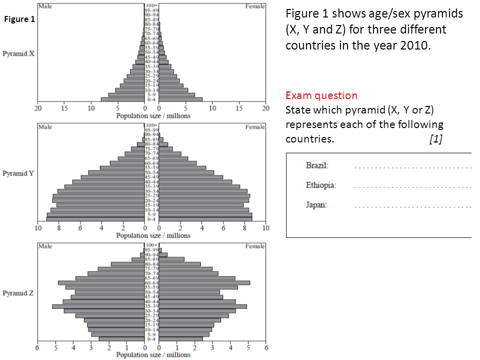 Figure 1 shows age/sex pyramids (X, Y and Z) for three different countries in the year 2010. Exam question State which pyramid (X, Y or Z) represents