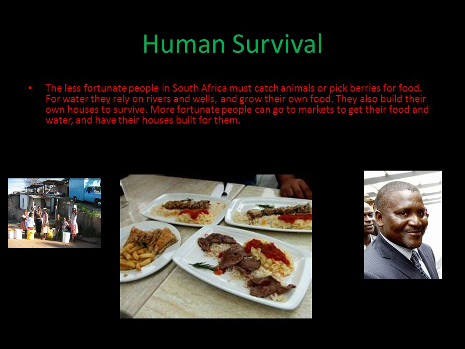Human Survival The less fortunate people in South Africa must catch animals or pick berries for food.