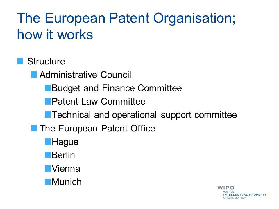 The European Patent Organisation; how it works Structure Administrative Council Budget and Finance Committee Patent Law Committee Technical and operational support committee The European Patent Office Hague Berlin Vienna Munich