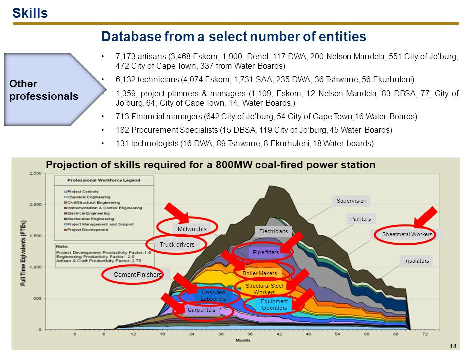 Skills Database from a select number of entities 7,173 artisans (3,468 Eskom, 1,900 Denel, 117 DWA, 200 Nelson Mandela, 551 City of Jo'burg, 472 City of Cape Town, 337 from Water Boards) 6,132 technicians (4,074 Eskom, 1,731 SAA, 235 DWA, 36 Tshwane, 56 Ekurhuleni) 1,359, project planners & managers (1,109, Eskom, 12 Nelson Mandela, 83 DBSA, 77, City of Jo'burg, 64, City of Cape Town, 14, Water Boards.) 713 Financial managers (642 City of Jo'burg, 54 City of Cape Town,16 Water Boards) 182 Procurement Specialists (15 DBSA, 119 City of Jo'burg, 45 Water Boards) 131 technologists (16 DWA, 89 Tshwane, 8 Ekurhuleni, 18 Water boards) 18 Projection of skills required for a 800MW coal-fired power station Other professionals Millwrights Painters Sheetmetal Workers Insulators Electricians Pipe fitters Supervision Truck drivers Cement Finishers Boiler Makers Structural Steel Workers Equipment Operators Unskilled Labourers Carpenters 18