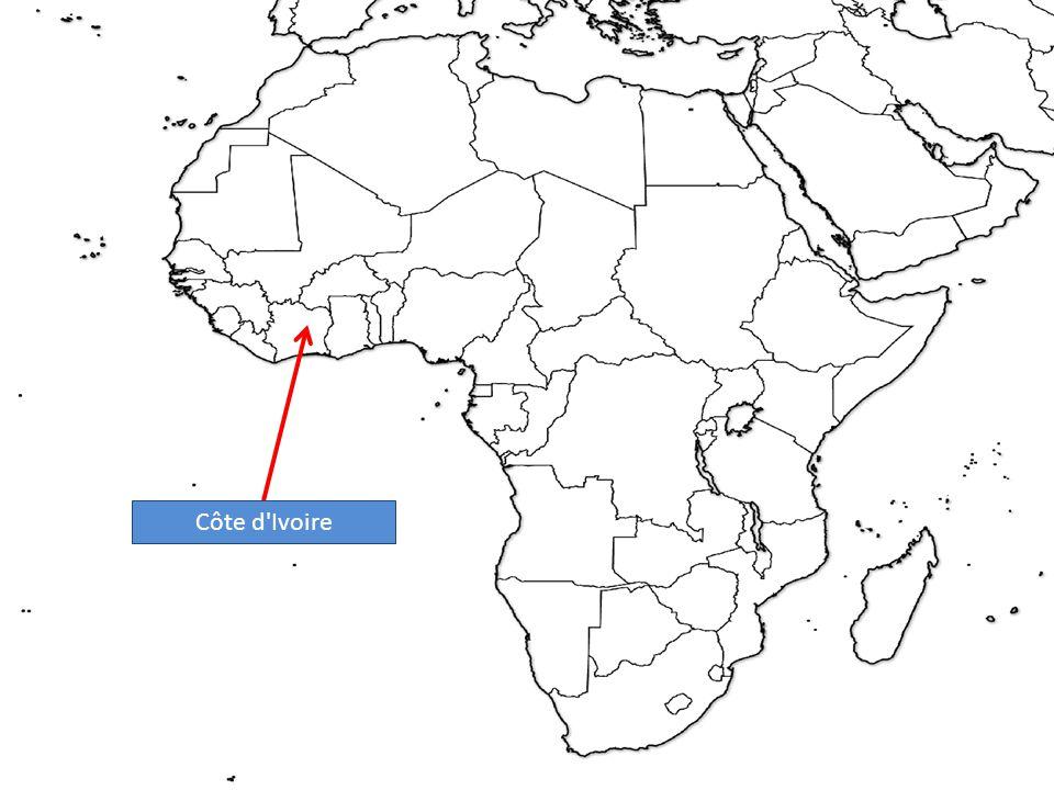 Democratic Republic of the Congo (D.R.C.)