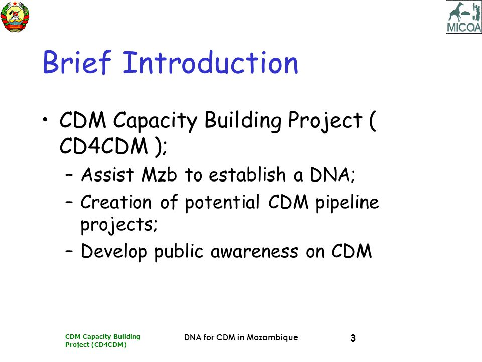 CDM Capacity Building Project (CD4CDM) DNA for CDM in Mozambique 3 Brief Introduction CDM Capacity Building Project ( CD4CDM ); –Assist Mzb to establish a DNA; –Creation of potential CDM pipeline projects; –Develop public awareness on CDM