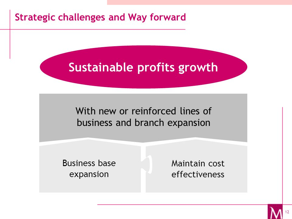 12 Strategic challenges and Way forward Sustainable profits growth Business base expansion Maintain cost effectiveness With new or reinforced lines of business and branch expansion