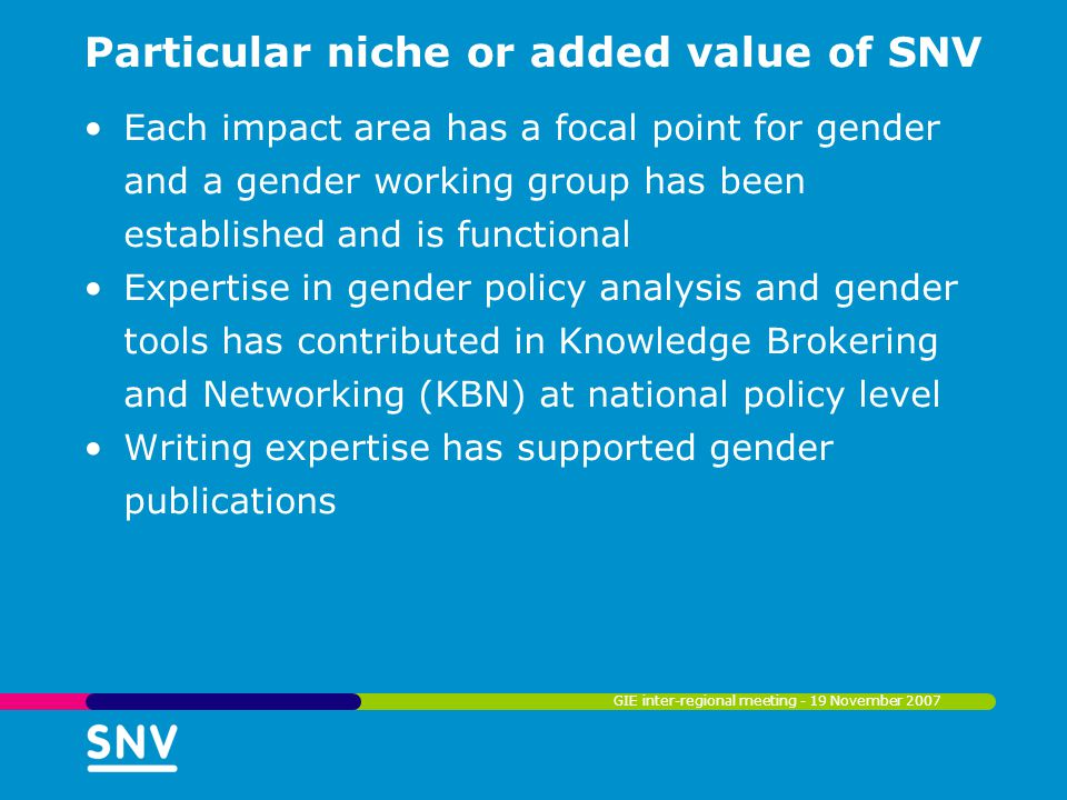 Particular niche or added value of SNV Each impact area has a focal point for gender and a gender working group has been established and is functional