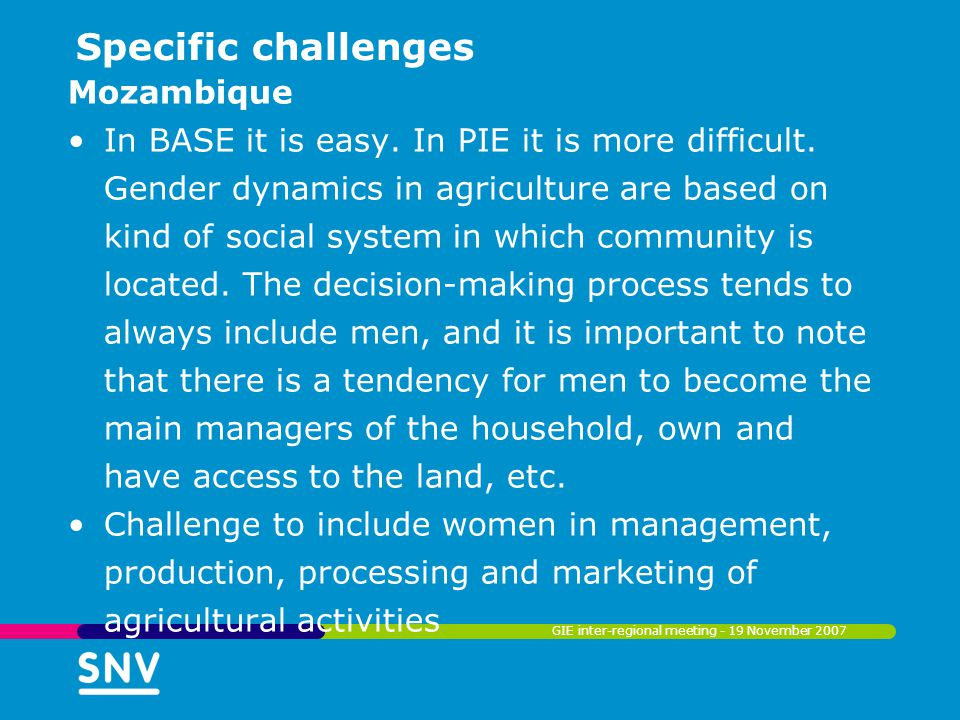 Specific challenges Mozambique In BASE it is easy. In PIE it is more difficult. Gender dynamics in agriculture are based on kind of social system in w