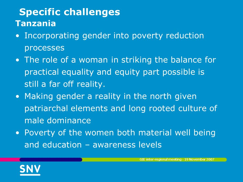 Specific challenges Tanzania Incorporating gender into poverty reduction processes The role of a woman in striking the balance for practical equality