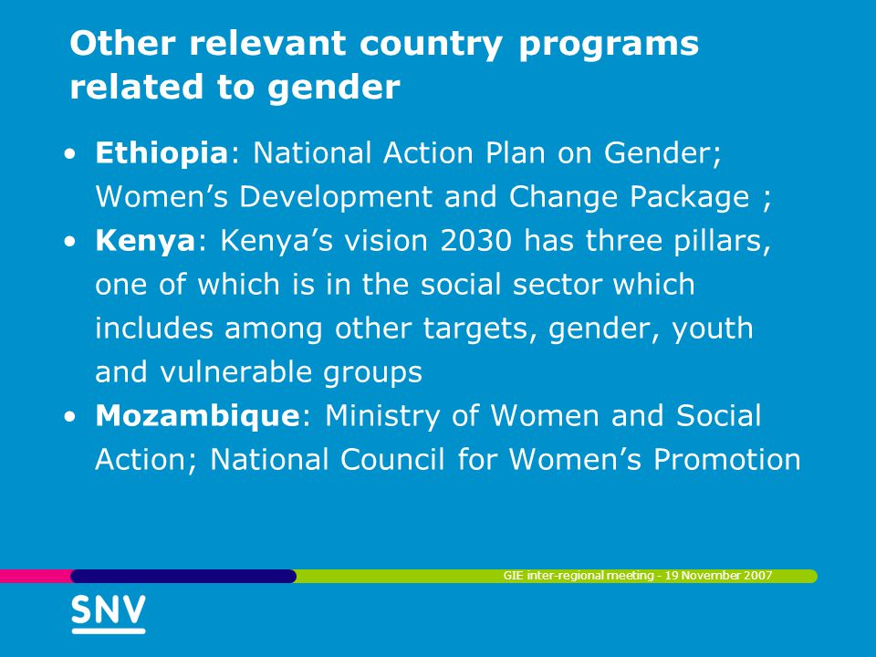 Other relevant country programs related to gender Rwanda: Vision 2020 has gender equality as one of its pillars; National Gender Policy; National Women's Employment Strategy; National Education for Girls Policy; One Cow per Poor Household Program Sudan: Promotion of women's participation in public life and increase in their representation in the legislative and executive organs Tanzania: Poverty assessments (data collection & availability) & consultation processes GIE inter-regional meeting - 19 November 2007