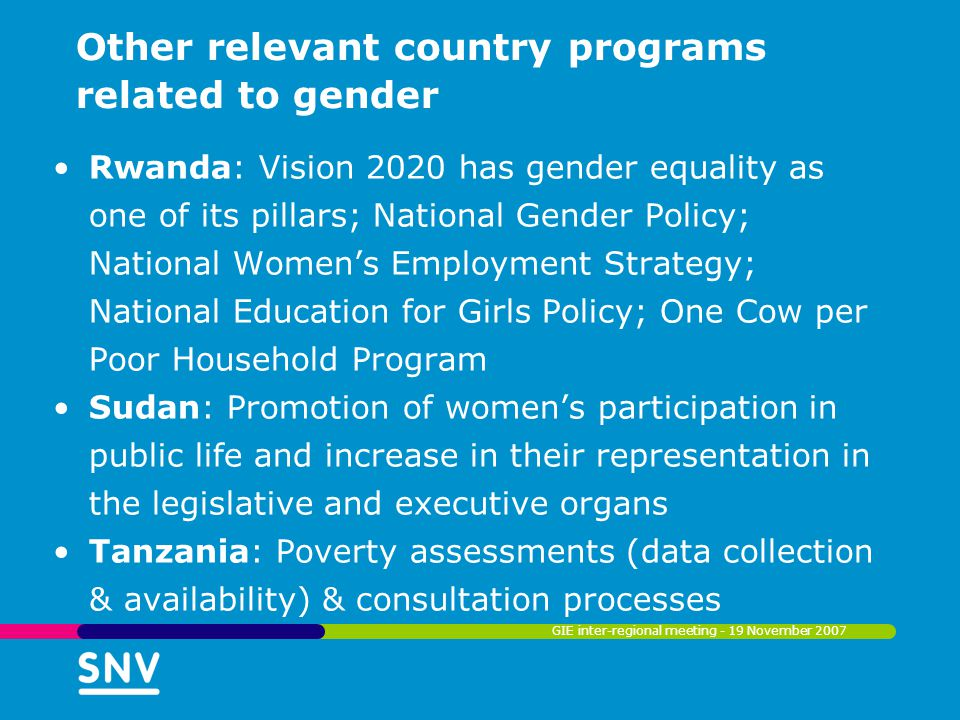 Other relevant country programs related to gender Uganda: Poverty Eradication Action Plan recognizes gender equality as one of the cross cutting themes in all the pillars; Plan for Modernization of Agriculture; Education Sector Investment Plan; National Action Plan for Women; National Gender Policy; Competitiveness and investment climate strategy; National Education for Girls Policy; The Water Sector Investment Plan GIE inter-regional meeting - 19 November 2007