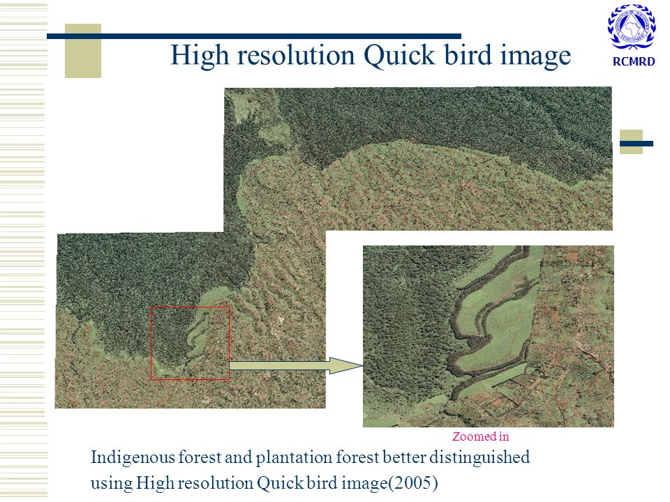 RCMRD High resolution Quick bird image Indigenous forest and plantation forest better distinguished using High resolution Quick bird image(2005) Zoomed in