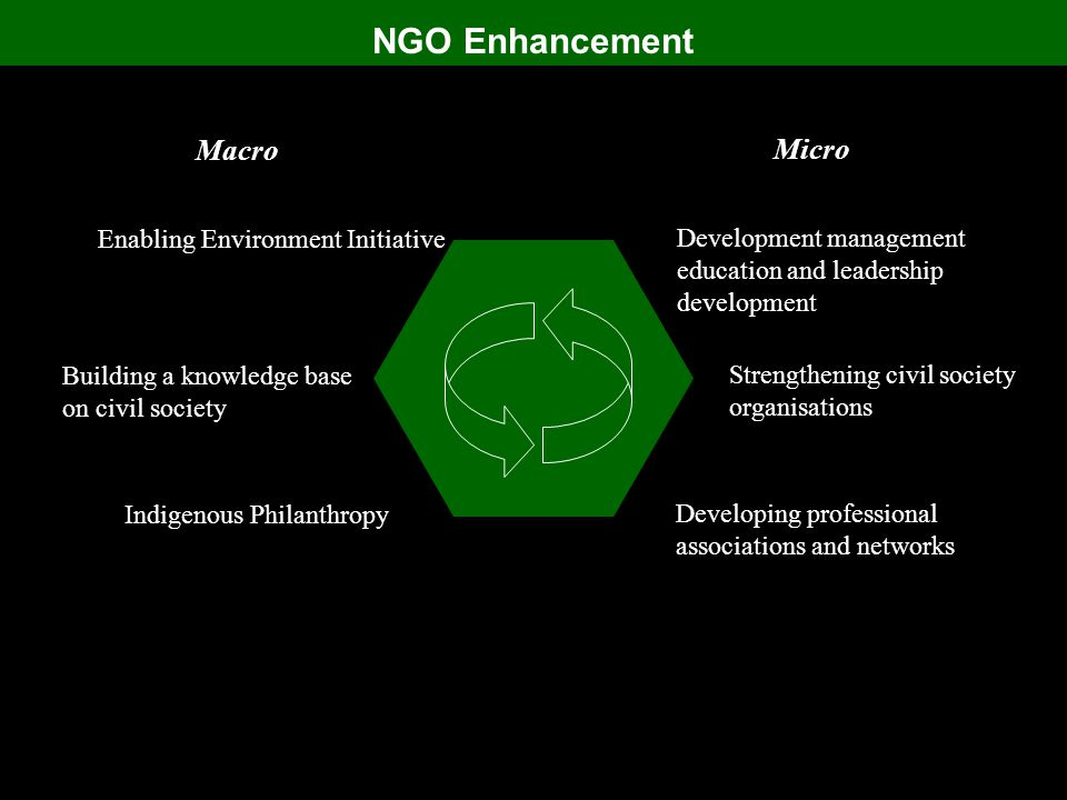 NGO Enhancement Indigenous Philanthropy Building a knowledge base on civil society Enabling Environment Initiative Macro Developing professional associations and networks Strengthening civil society organisations Development management education and leadership development Micro