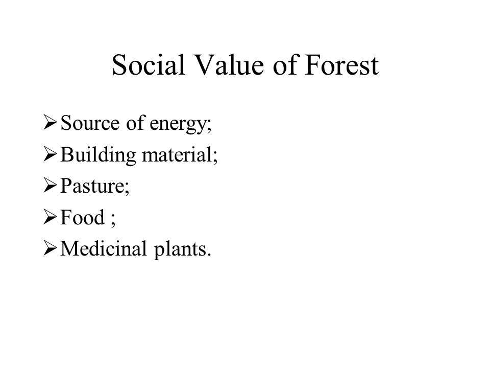 Social Value of Forest  Source of energy;  Building material;  Pasture;  Food ;  Medicinal plants.