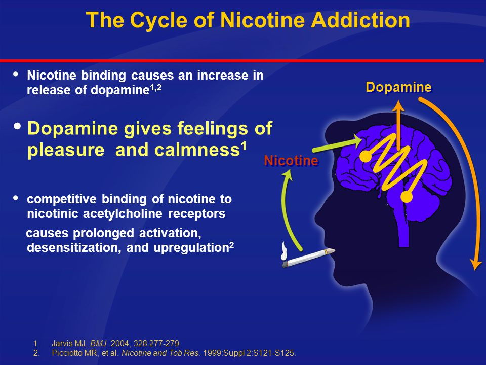Mechanism of Action of Nicotine in the Central Nervous System  Nicotine binds preferentially to nAChRs in the central nervous system; one key area is