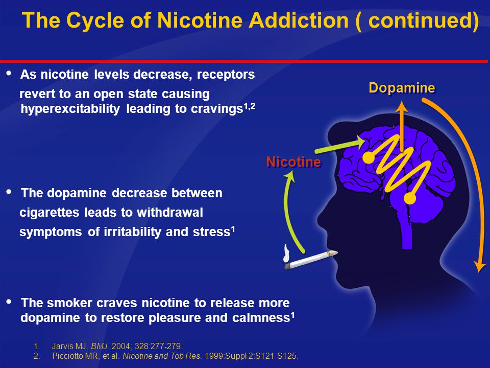 The Cycle of Nicotine Addiction  Nicotine binding causes an increase in release of dopamine 1,2  Dopamine gives feelings of pleasure and calmness 1