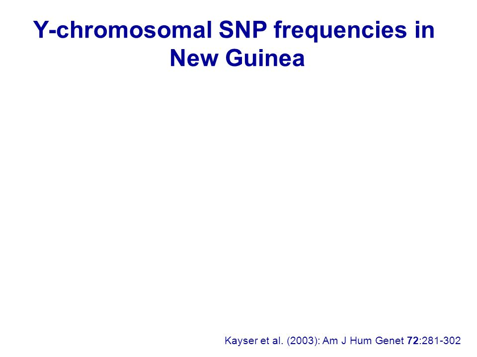Kayser et al. (2003): Am J Hum Genet 72:281-302 Y-chromosomal SNP frequencies in New Guinea