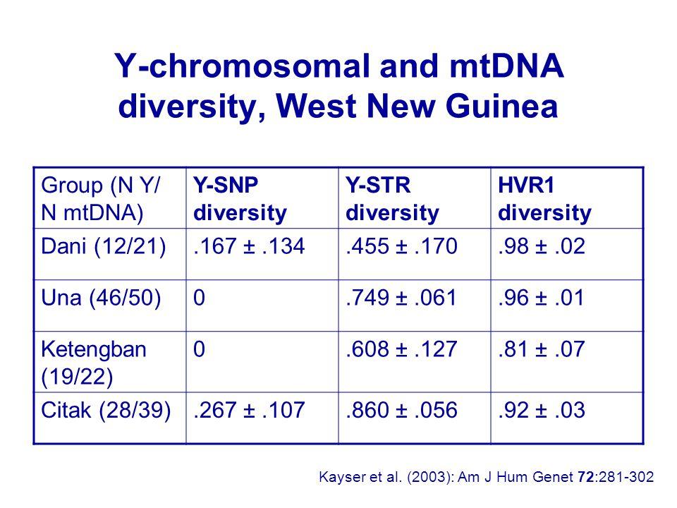 Y-chromosomal and mtDNA diversity, West New Guinea Group (N Y/ N mtDNA) Y-SNP diversity Y-STR diversity HVR1 diversity Dani (12/21).167 ±.134.455 ±.170.98 ±.02 Una (46/50)0.749 ±.061.96 ±.01 Ketengban (19/22) 0.608 ±.127.81 ±.07 Citak (28/39).267 ±.107.860 ±.056.92 ±.03 Kayser et al.