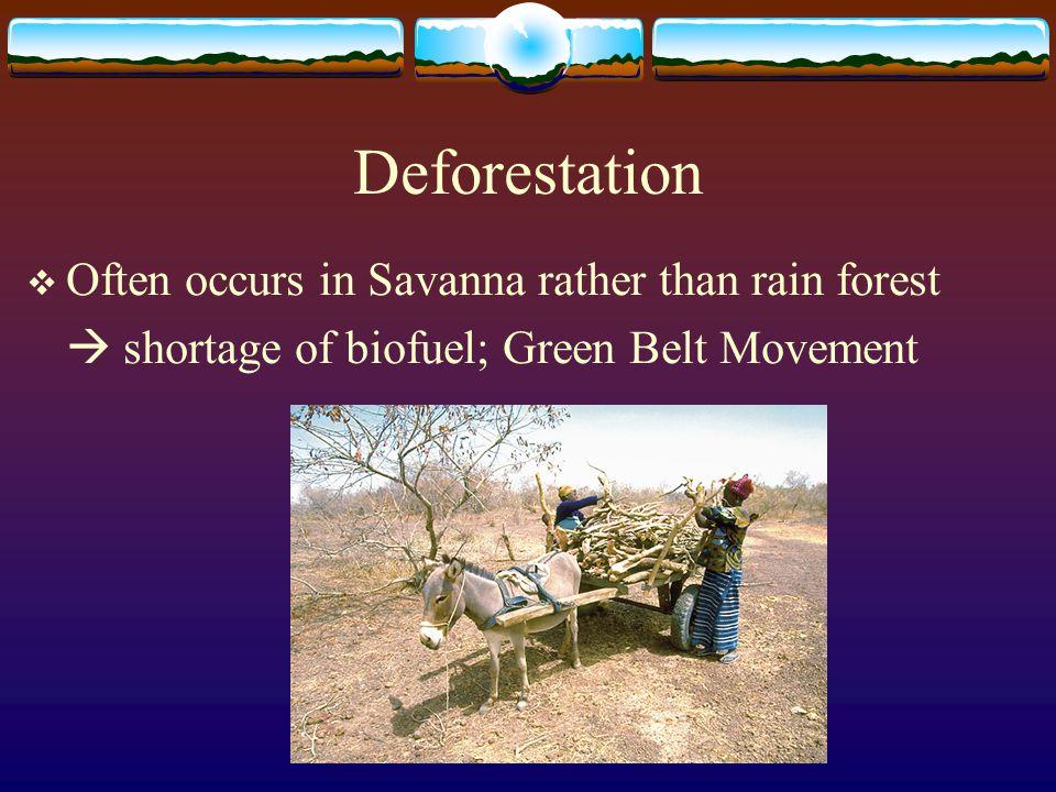 Deforestation  Often occurs in Savanna rather than rain forest  shortage of biofuel; Green Belt Movement