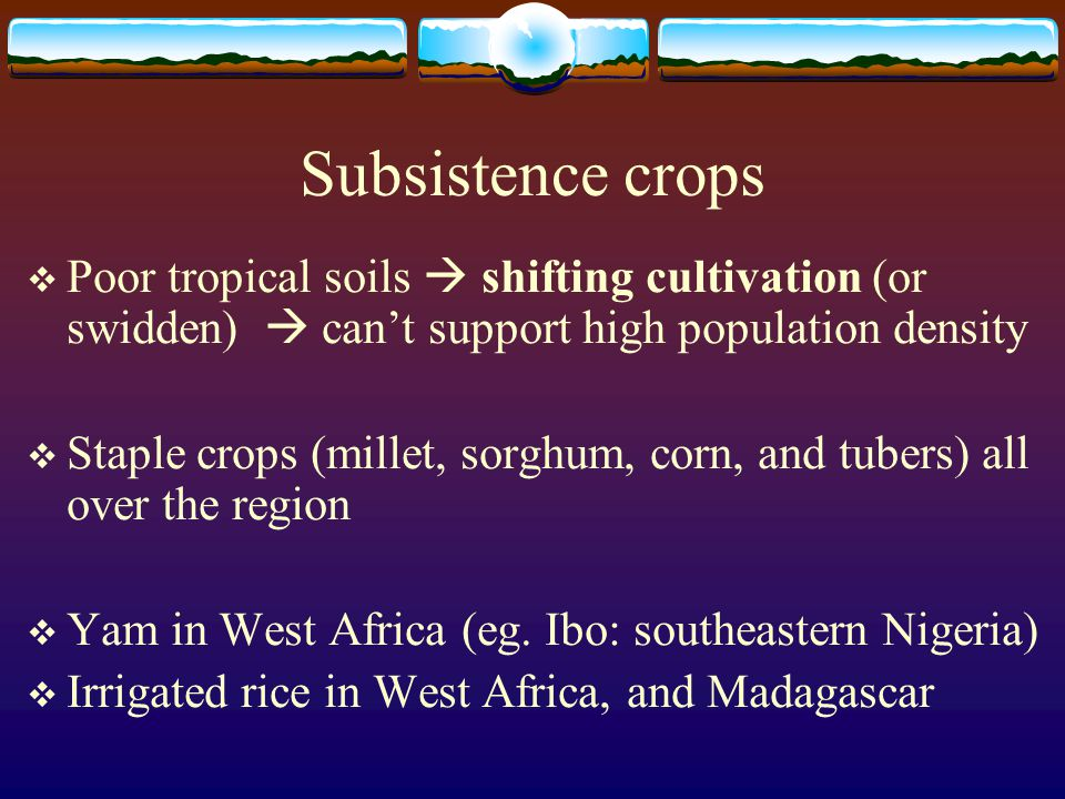 Subsistence crops  Poor tropical soils  shifting cultivation (or swidden)  can't support high population density  Staple crops (millet, sorghum, c