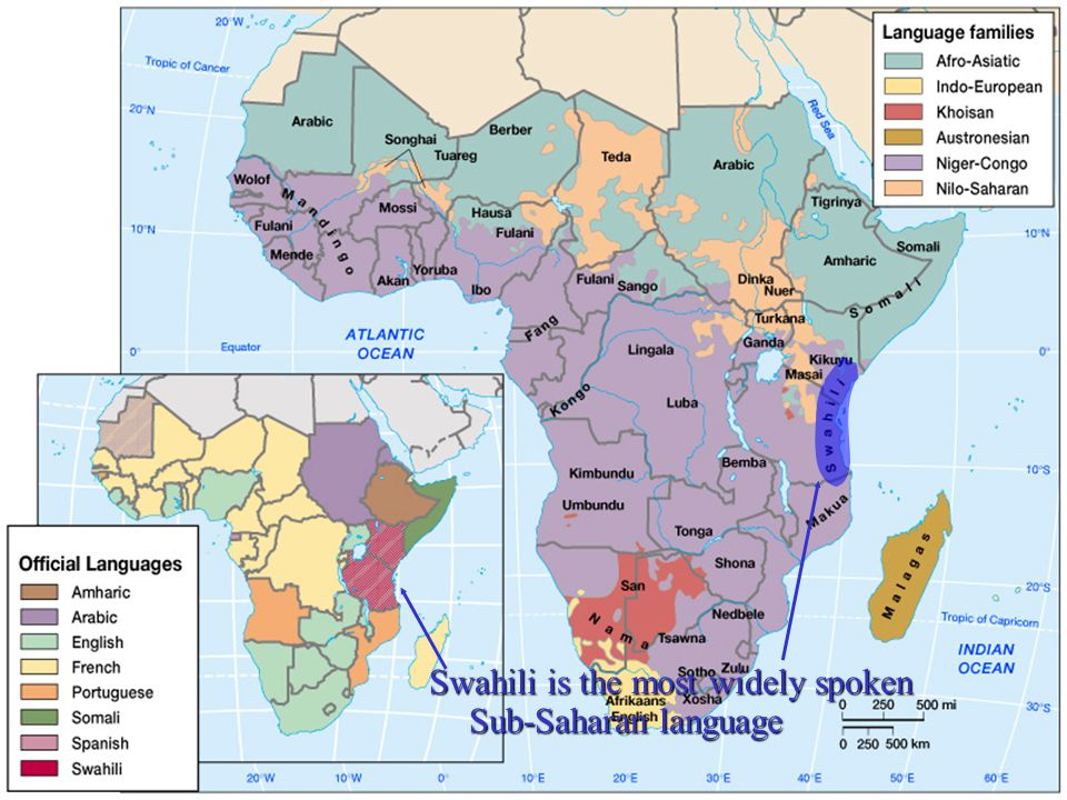 Swahili is the most widely spoken Sub-Saharan language